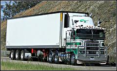 Minőségi szállítási szolgáltatások az Oferteo-val